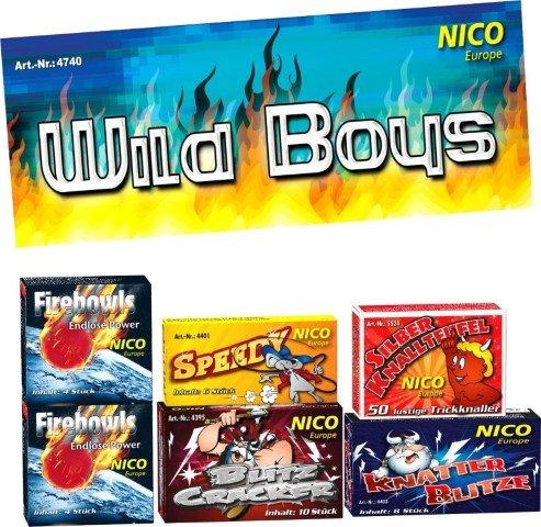 Wild Boys Kinderfeuerwerk Beutel mit 6 Schachteln