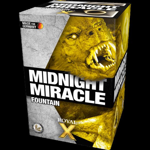 Midnight Miracle - 1 Minute leises leuchtfeuerwerk von Lesli