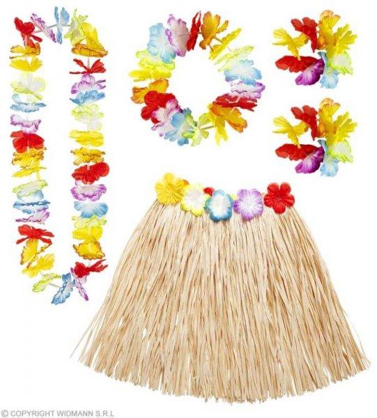 Schickes Kostüm Hawaii Set