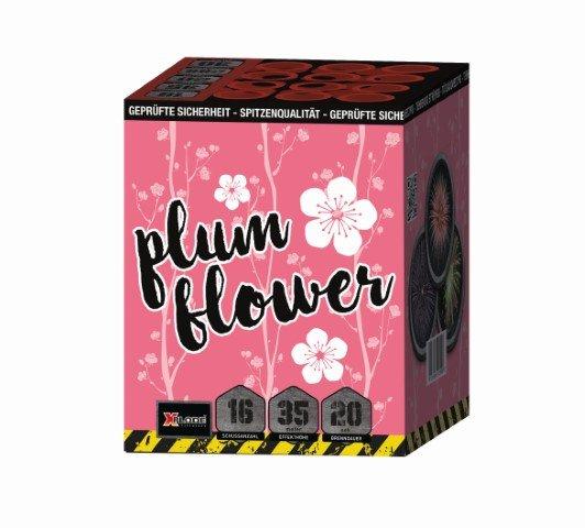 Plum Flower - 16 Schuss Feuerwerk mit roten Blinkersternen - XP5236