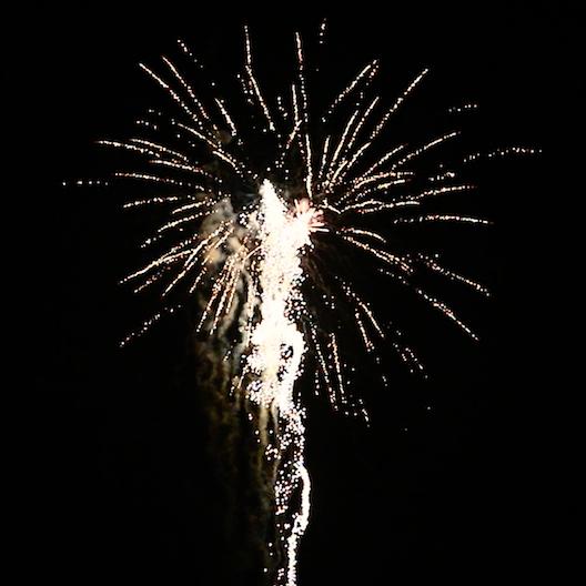 BI25S1-201 F3 Feuerwerk Tropic