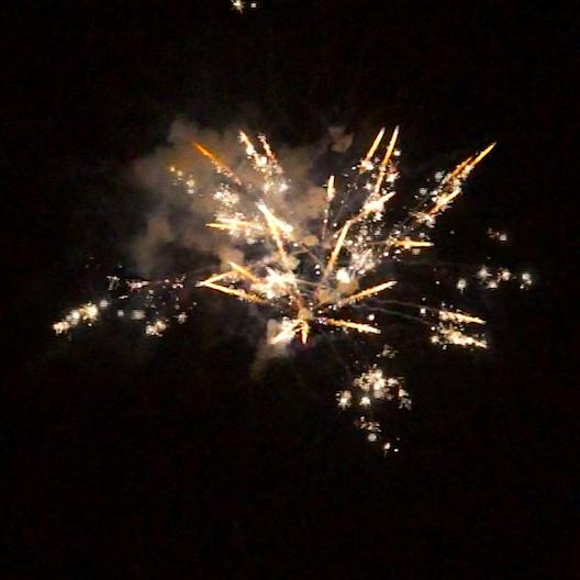BI25S1-228 F3 Feuerwerk von Tropic