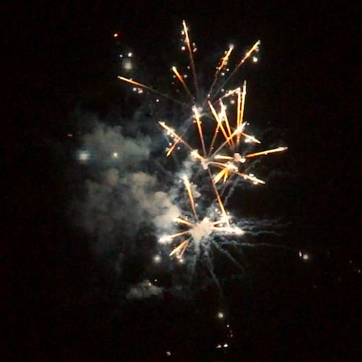 BI25S1-229 F3 Feuerwerk von Tropic