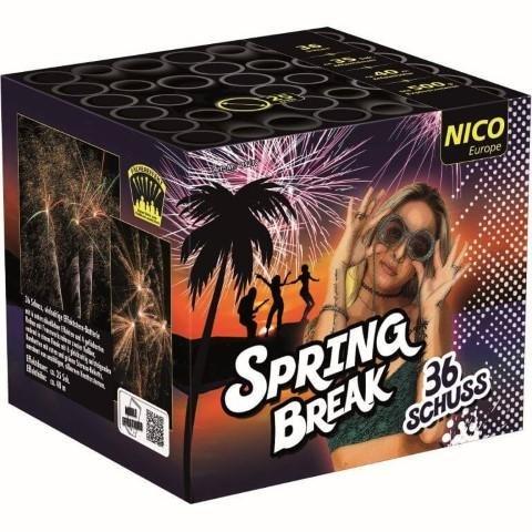 Spring Break 36 Schuss Feuerwerksbatterie mit abwechslungsreichen Effekten