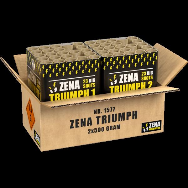 Zena Triumph - 2 XL Feuerwerksbatterien in einem Verbund