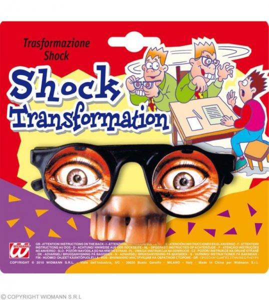 Schock Transformation