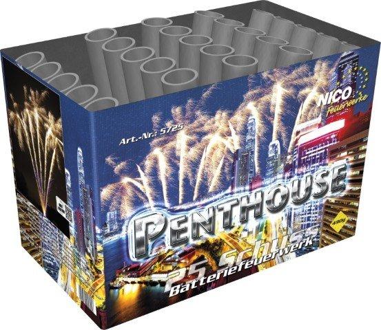 Pyrolager.de - Nico Penthouse