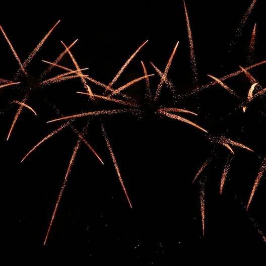 BF48s2-5009 F3 Feuerwerk Tropic